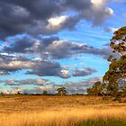Next to Mt Franklin by Lynden