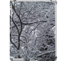 Snowy Branches in Wonderland iPad Case/Skin