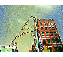 Looking Up, Downtown Photographic Print