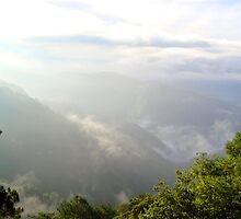 Mountains with fog in Baguio, Philippines by walterericsy