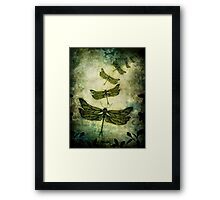 Fly, Fly Away! Framed Print