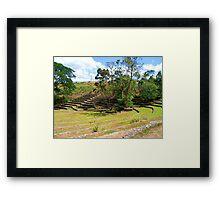 La Mesa Ecopark Ampitheater Framed Print