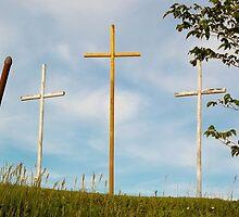 Crosses in Limestone, WV by Tim White