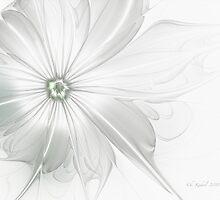 Vulnerability by Christine Kühnel