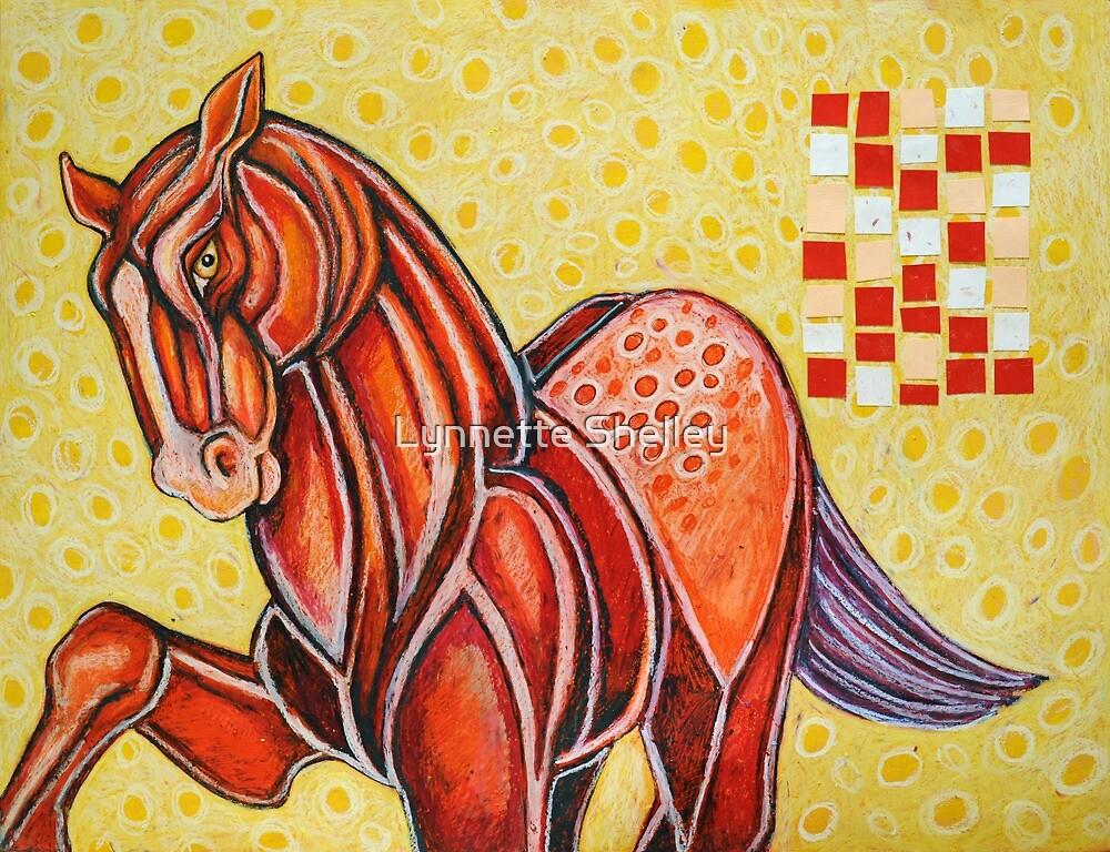 The Appaloosa by Lynnette Shelley