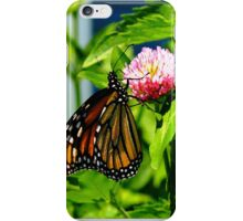 Sweetness of clover iPhone Case/Skin