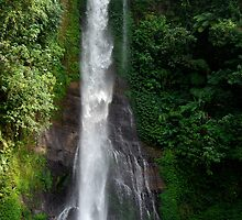 Waterfall in Bali island by shkyo30