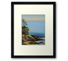 Diver's Cove, Laguna Beach  Framed Print