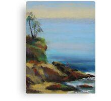 Diver's Cove, Laguna Beach  Canvas Print
