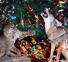 Wild Animals Bobcat and Coyote Celebrate Christmas Southwest Style by Rick Short