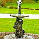 Fountain by Trevor Kersley