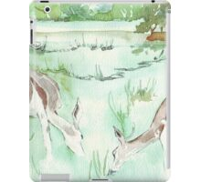 Sketching in the Game Reserve - Springbuck iPad Case/Skin