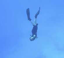 Diver by Morgan Wade