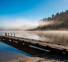 Morning glory by age-photography