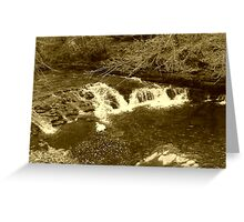 Forked Falls In Sepia Greeting Card