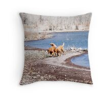 Hot On the Trail Throw Pillow