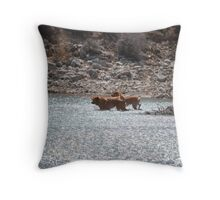 Trail Gone Cold Throw Pillow
