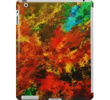 EXPLOSION OF COLOUR 2 iPad Case/Skin