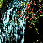 Waterfall, Sefton Park, Liverpool by Spadgie