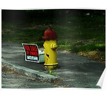 Budget Crunch: For Sale Hydrant,  Low Miles  Poster