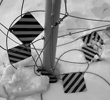 Parking Lot Snow by Brian Rivera