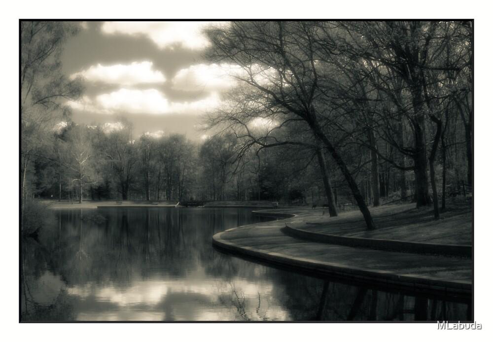 Reflections On A Pond   by MLabuda