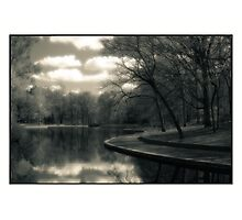 Reflections On A Pond   Photographic Print