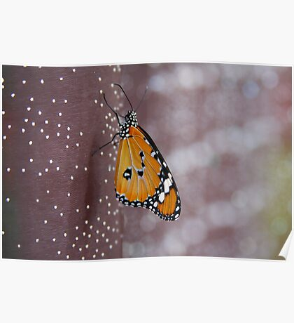 Strange Attraction - Butterfly on Fabric Poster