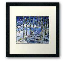 Winter in South Africa Framed Print
