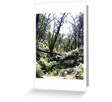 Brush -  Grampians, Australia Greeting Card