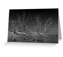 Botany Bay Mystery Greeting Card