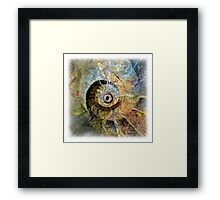 The Atlas Of Dreams - Color Plate 35 Framed Print