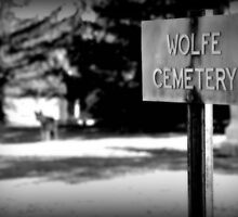 Wolfe Cemetery by Alexis  Bonner