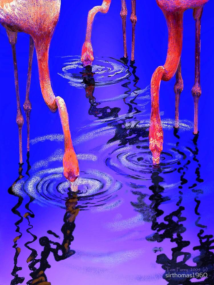 Flamingo Rhythms by sirthomas1960