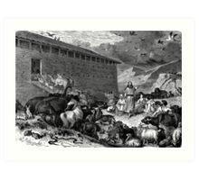 Noahs ark Art Print