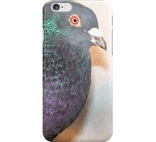Duffy - Love for Pigeons  iPhone Case/Skin