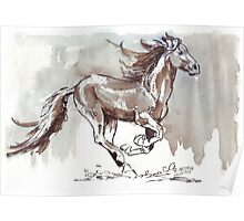 A handful of Southerly wind ... Wild horses in South Africa Poster