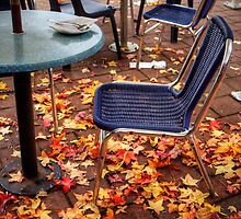 Autumn leaves outside a cafe in Stirling, Adelaide Hills by Elana Bailey