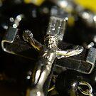 Focusing Faith by TriciaDanby