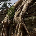 Ta Prohm Banyon Tree Roots by Marylou Badeaux