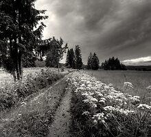 Jura Suisse by Laurent Hunziker