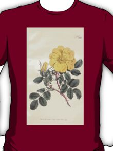 The Botanical magazine, or, Flower garden displayed by William Curtis V11 V12 1797 1798 0009 Rosa Lutea Austrian Rose T-Shirt