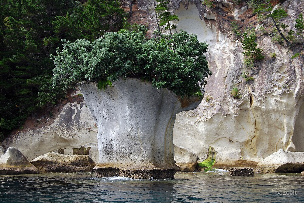 Island with top knot? or Broccoli 'Island'? by bazcelt