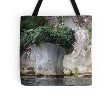 Island with top knot? or Broccoli 'Island'? Tote Bag