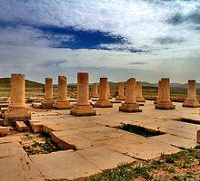 Cyrus' Palace - Pasargadae - IRAN by Bryan Freeman
