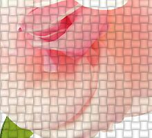 Woven Rose 2 by DOGraphics