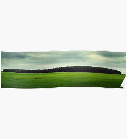 Panoramic Woodland Poster