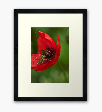 Strike the pose Framed Print