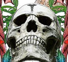 DMT Skull Sticker