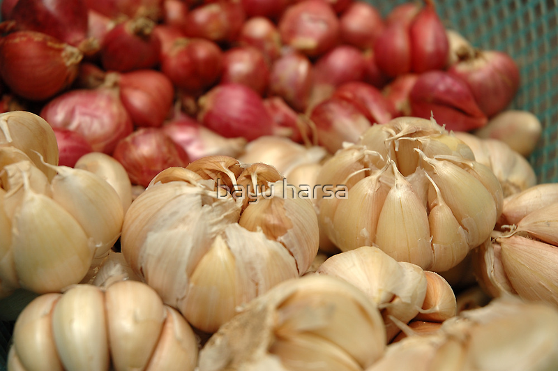 garlic by bayu harsa